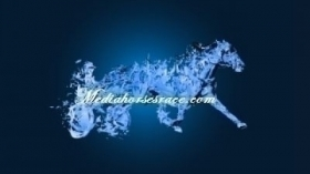 Bellezza lady - Mediahorsesrace.com